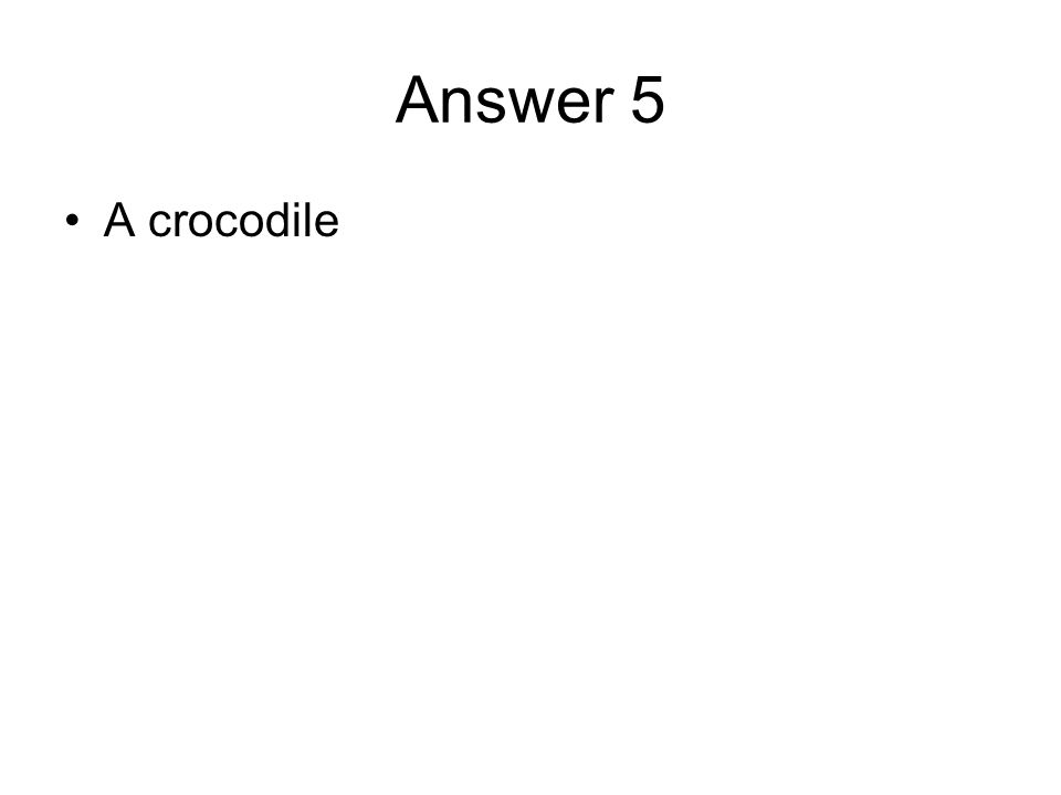 Answer 5 A crocodile