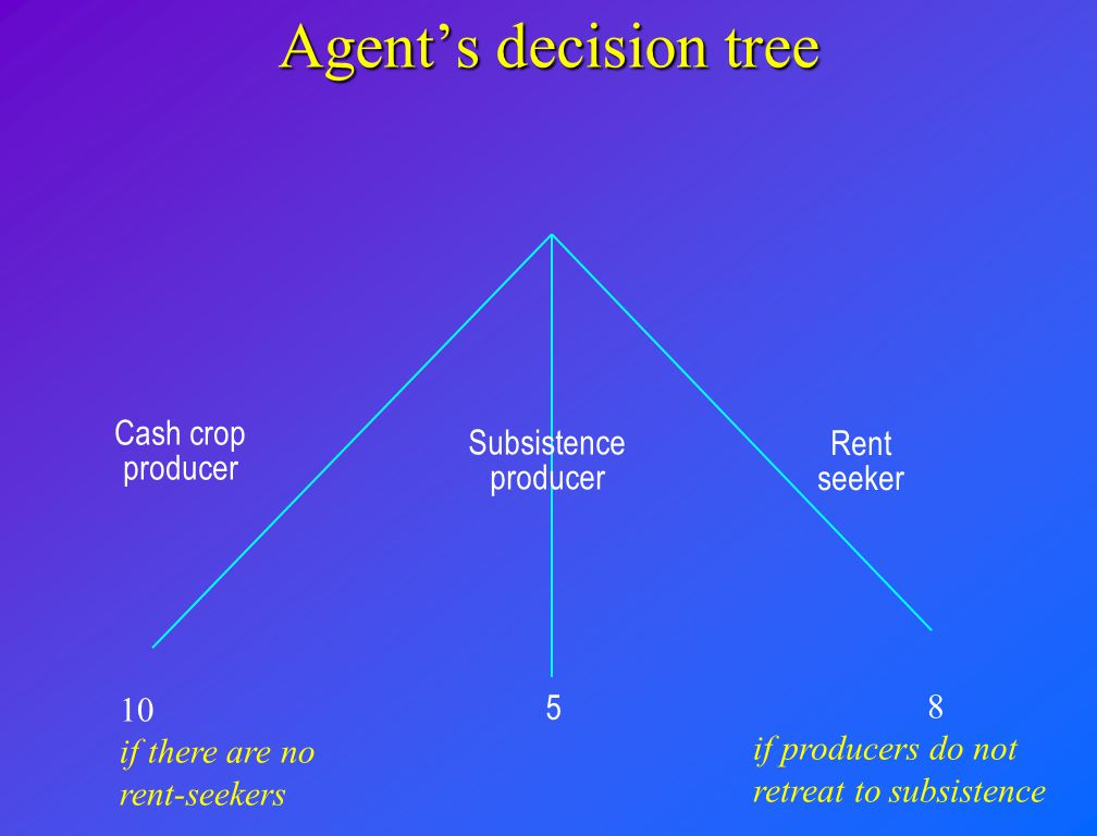 Agent's decision tree Cash crop producer Subsistence producer