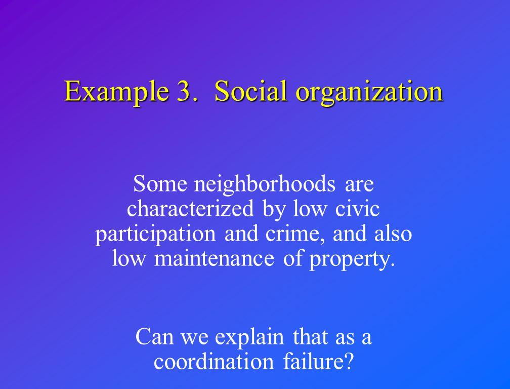 Example 3. Social organization