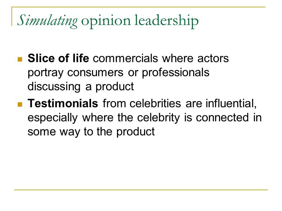 Simulating opinion leadership
