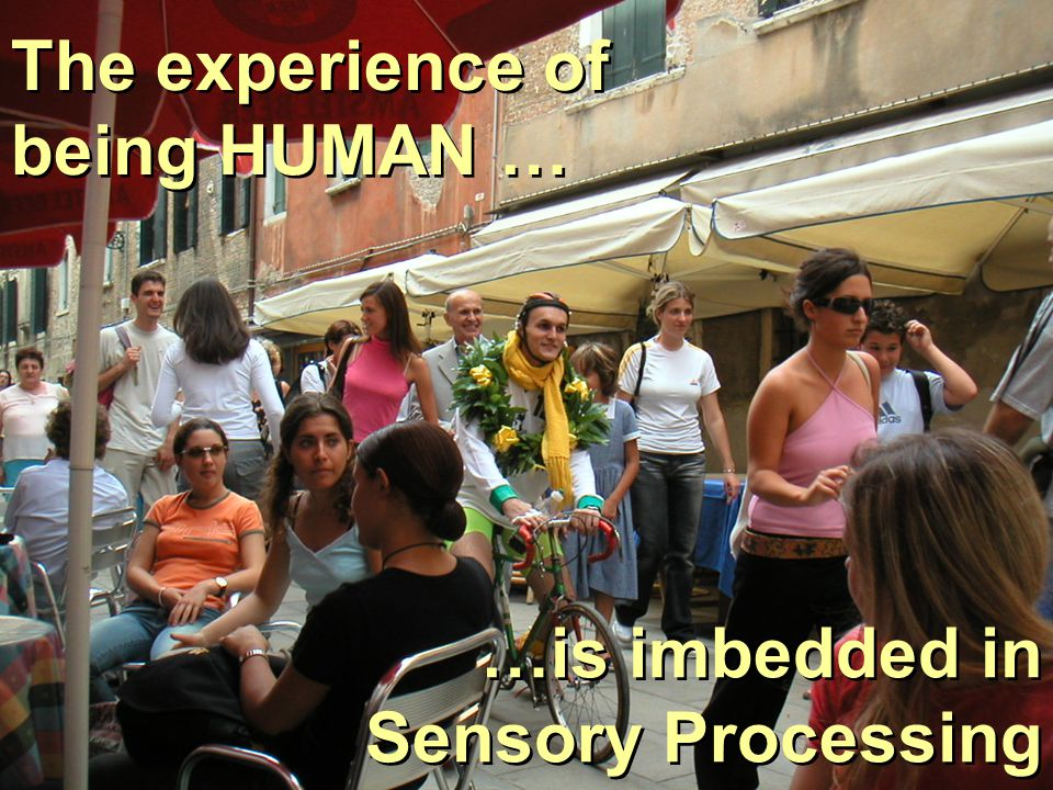 …is imbedded in Sensory Processing