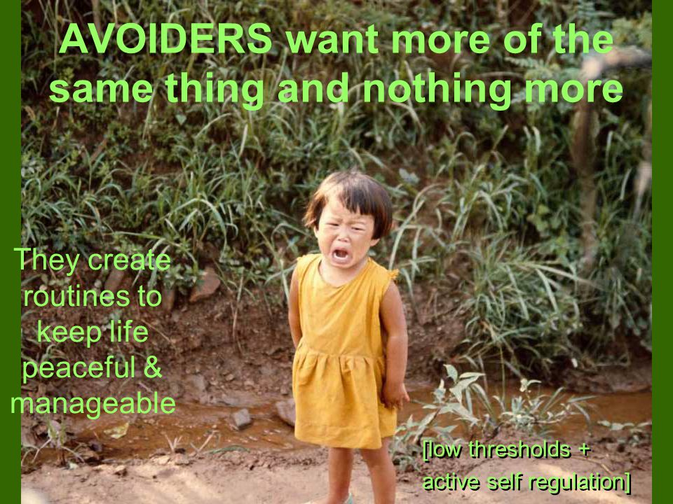 AVOIDERS want more of the same thing and nothing more