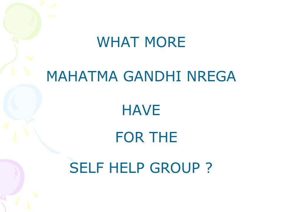 WHAT MORE MAHATMA GANDHI NREGA HAVE FOR THE SELF HELP GROUP