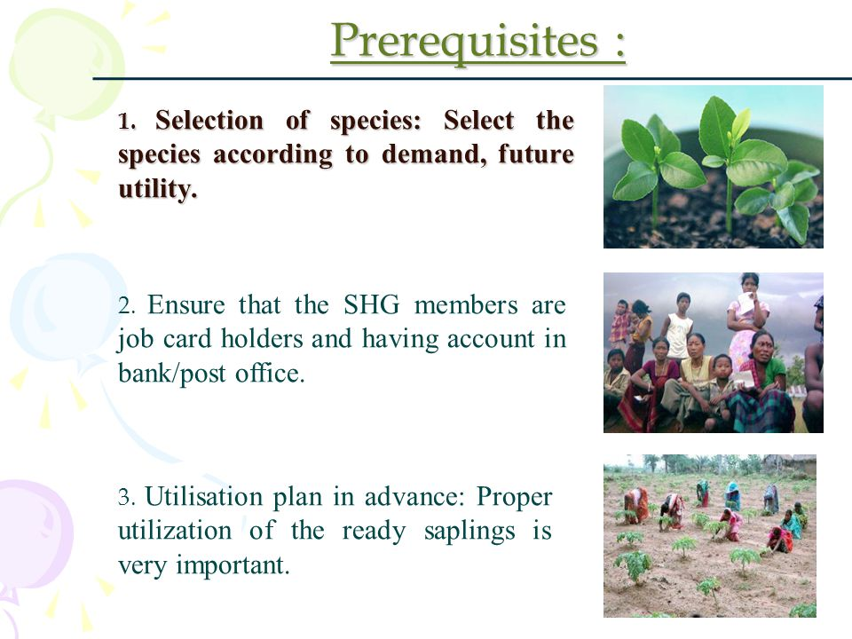 Prerequisites : 1. Selection of species: Select the species according to demand, future utility.
