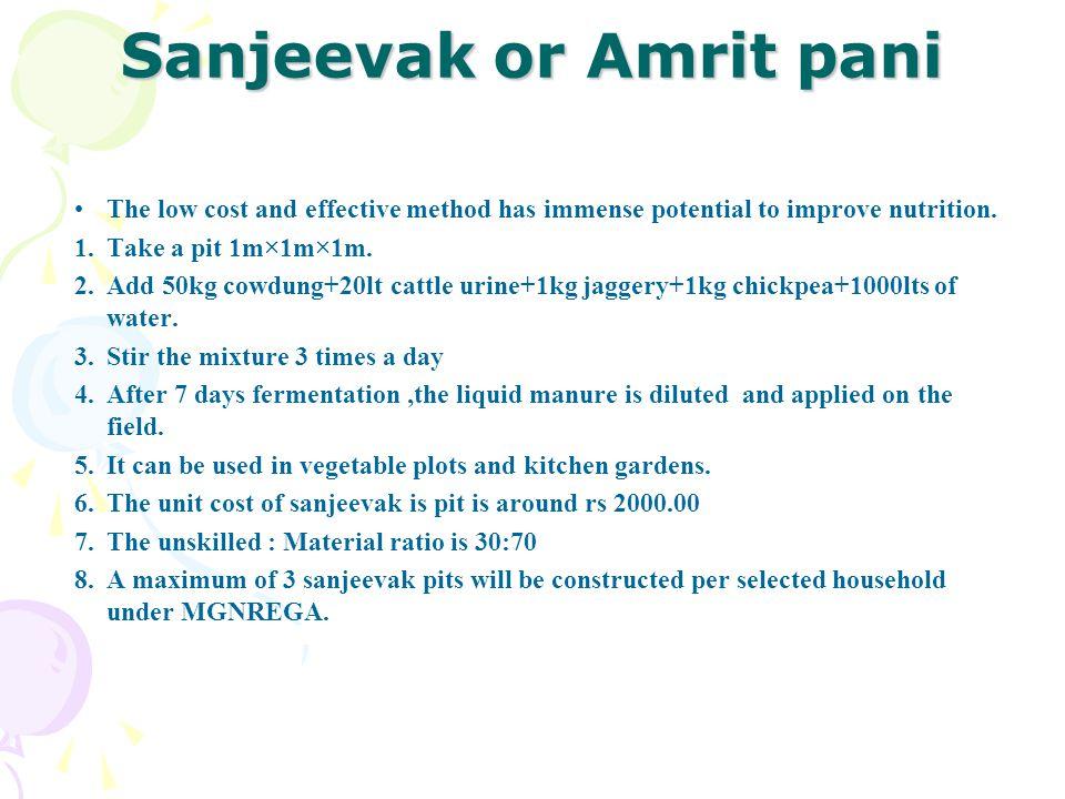 Sanjeevak or Amrit pani