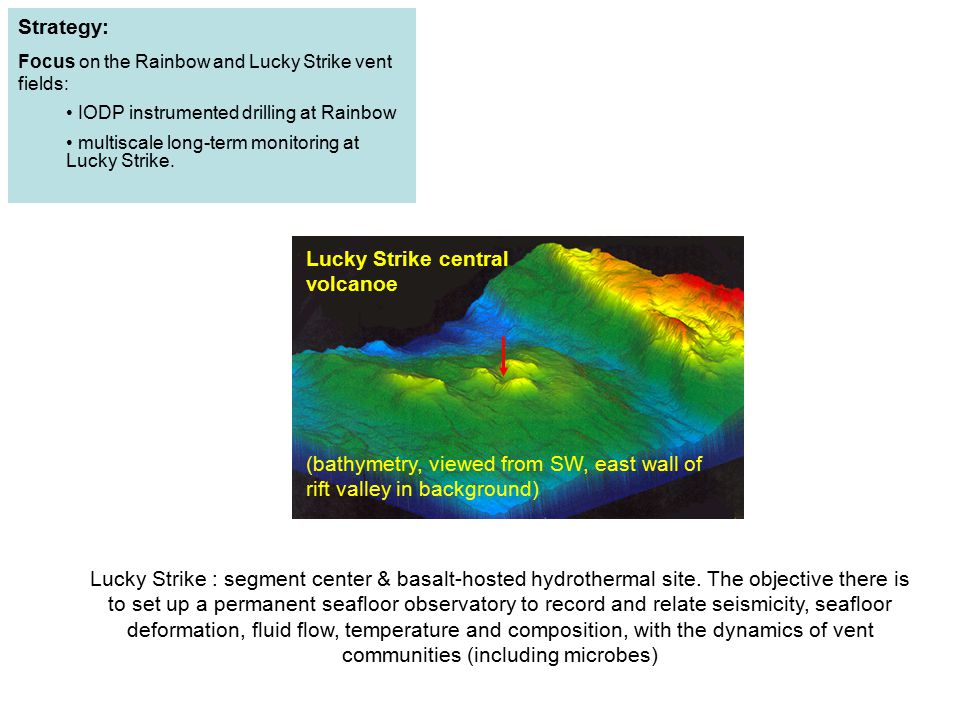 (bathymetry, viewed from SW, east wall of rift valley in background)