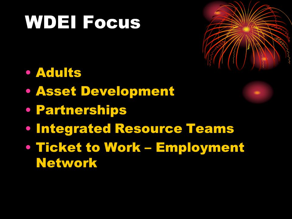 WDEI Focus Adults Asset Development Partnerships