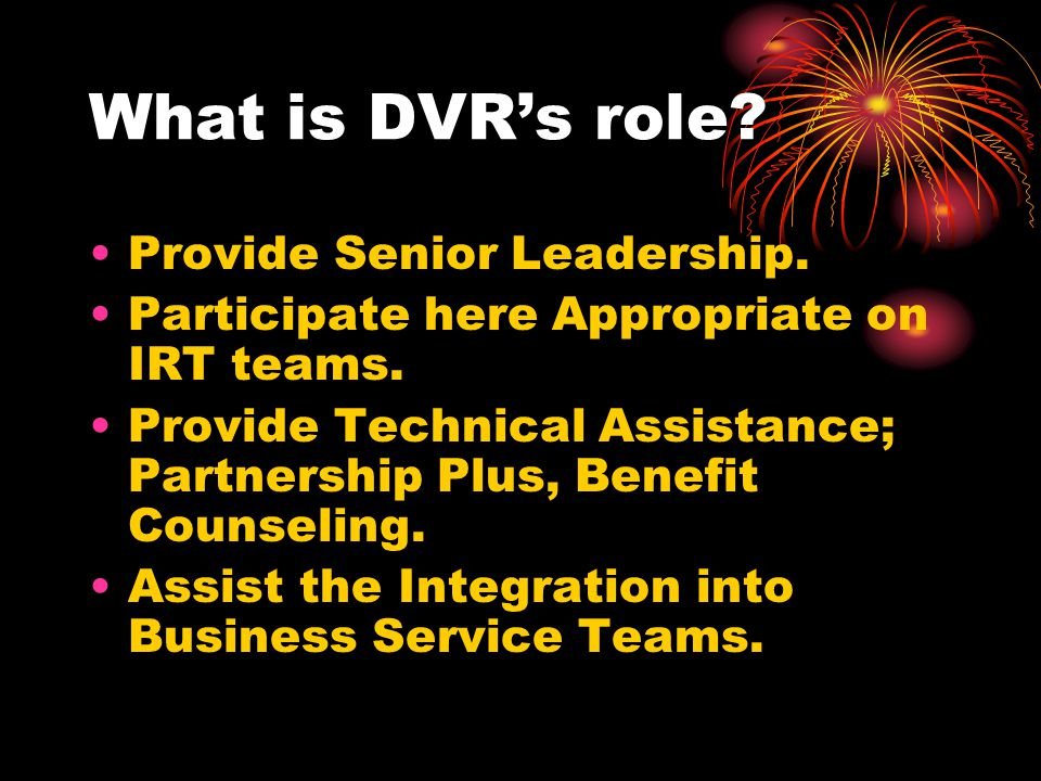 What is DVR's role Provide Senior Leadership.