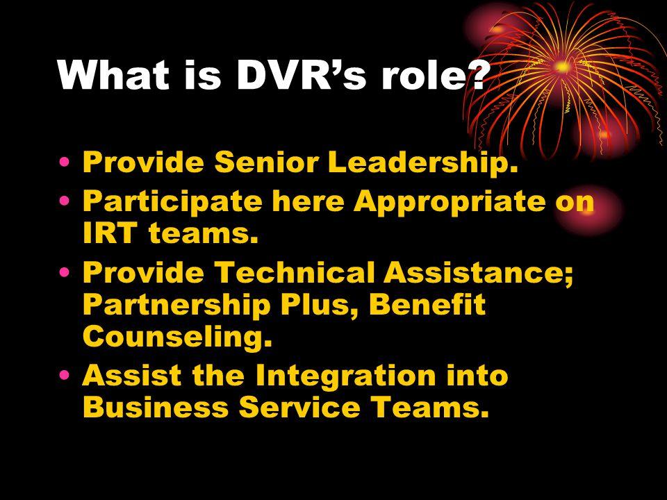 What is DVR's role Provide Senior Leadership.
