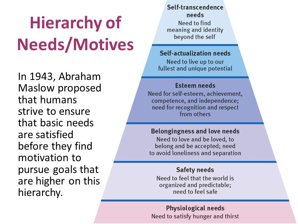 Hierarchy of Needs/Motives