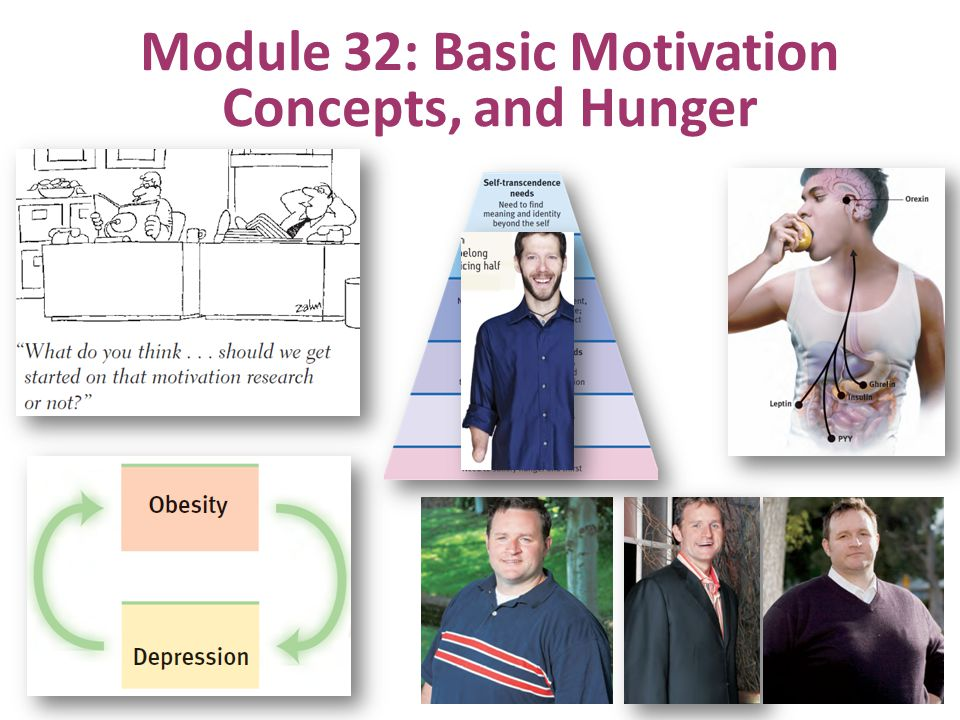 Module 32: Basic Motivation Concepts, and Hunger
