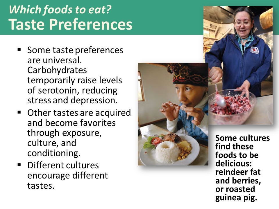 Which foods to eat Taste Preferences