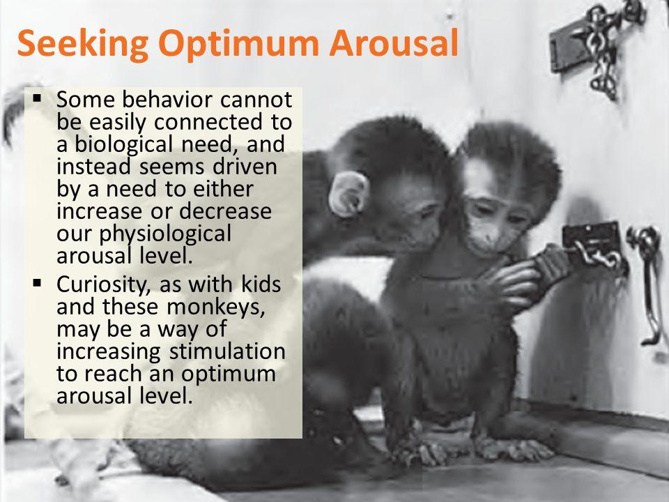 Seeking Optimum Arousal