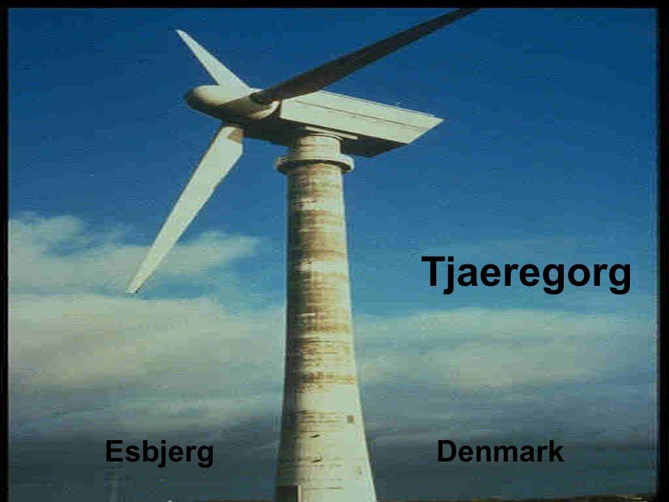 Tjaeregorg Esbjerg Denmark