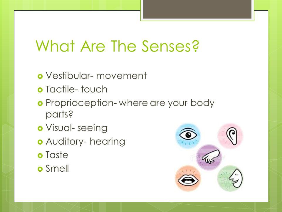 What Are The Senses Vestibular- movement Tactile- touch