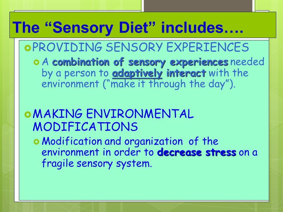 The Sensory Diet includes….