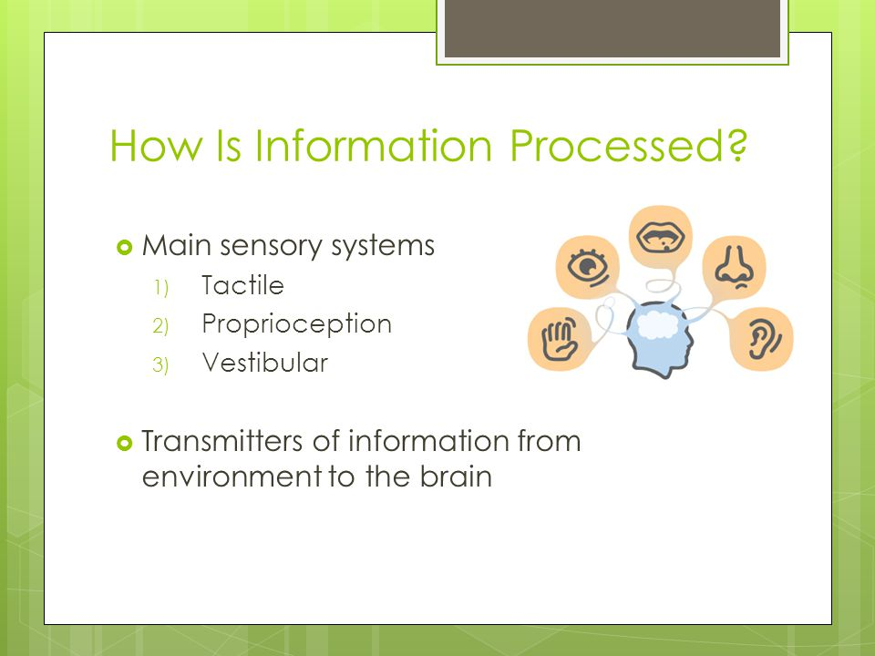 How Is Information Processed