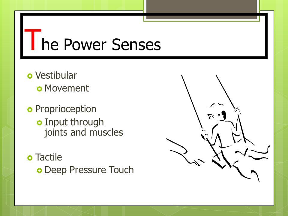 The Power Senses Vestibular Movement Proprioception