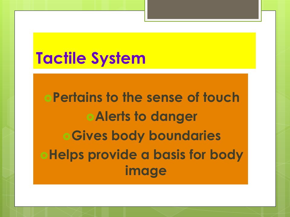Pertains to the sense of touch Helps provide a basis for body image