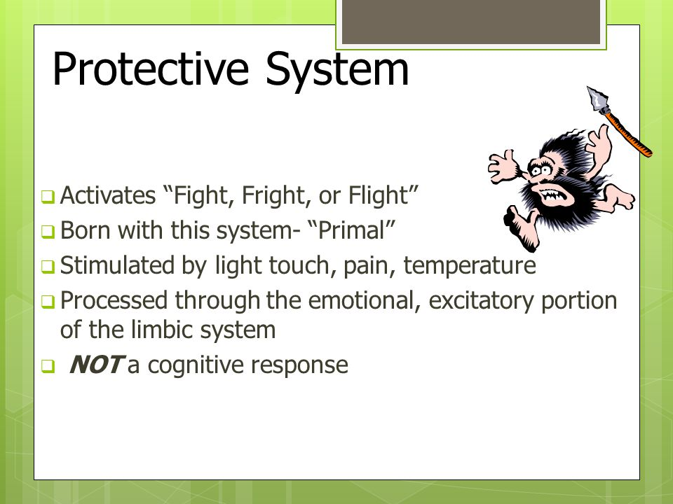 Protective System Activates Fight, Fright, or Flight