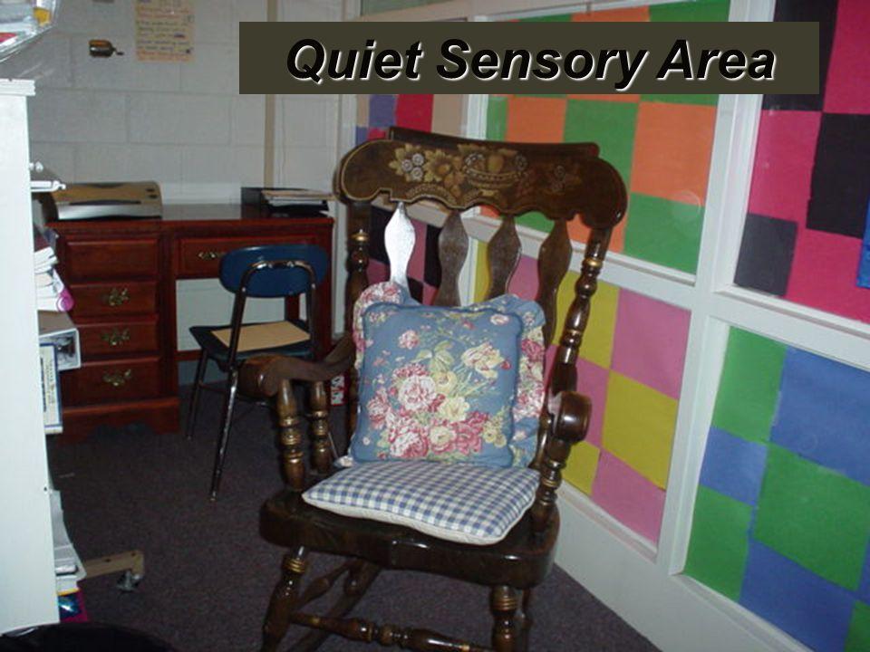 Quiet Sensory Area