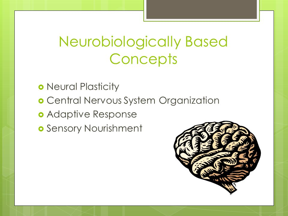 Neurobiologically Based Concepts