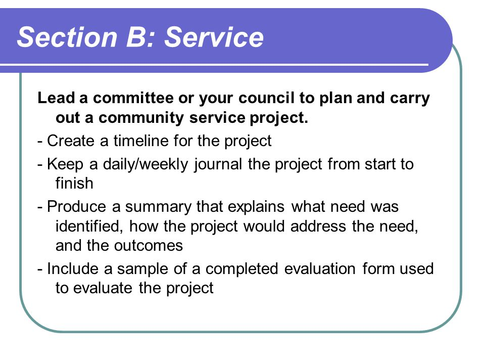 Section B: Service Lead a committee or your council to plan and carry out a community service project.