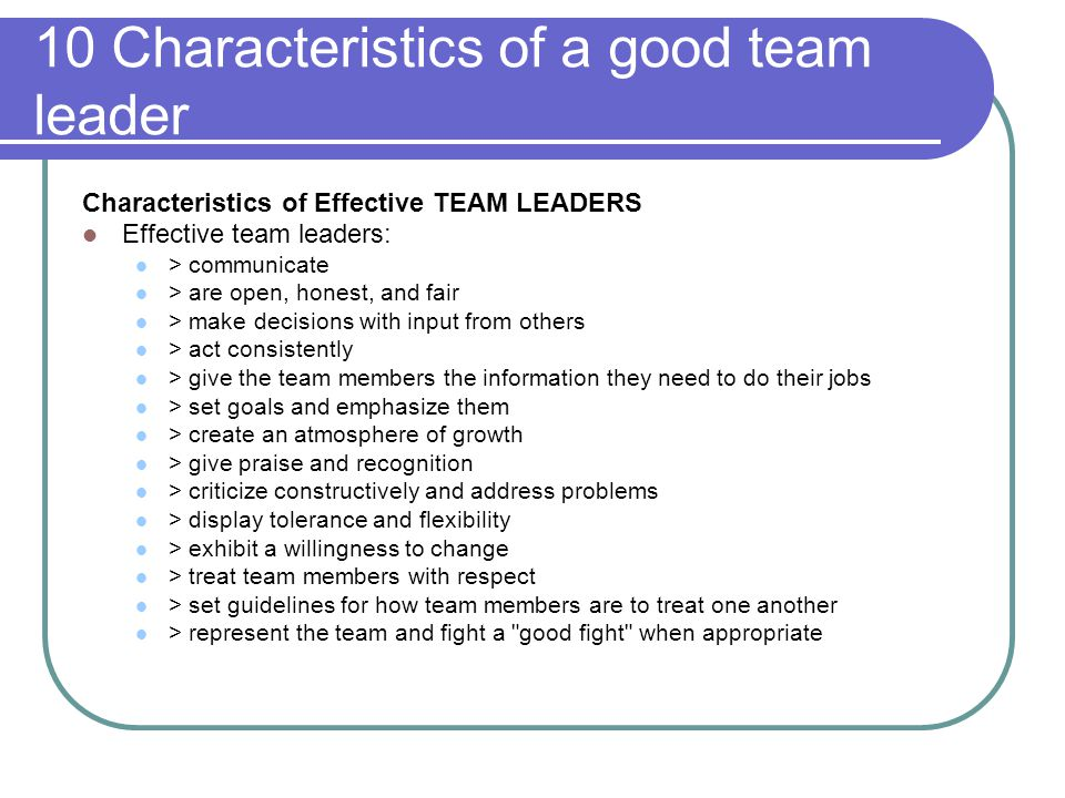What makes a good team player essay