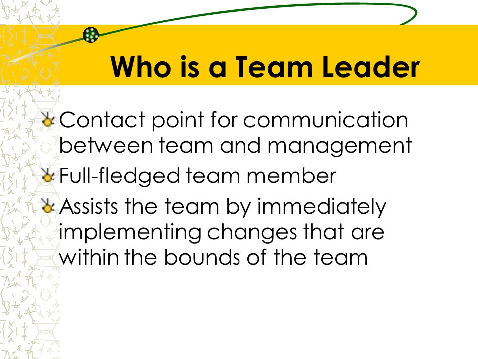 Who is a Team Leader Contact point for communication between team and management. Full-fledged team member.