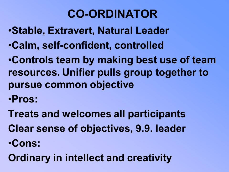 CO-ORDINATOR Stable, Extravert, Natural Leader