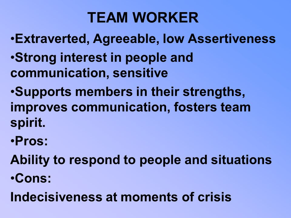 TEAM WORKER Extraverted, Agreeable, low Assertiveness