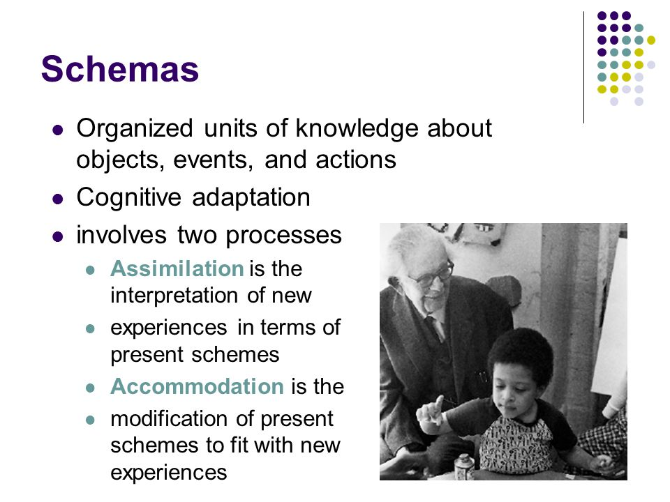 Schemas Organized units of knowledge about objects, events, and actions. Cognitive adaptation. involves two processes.
