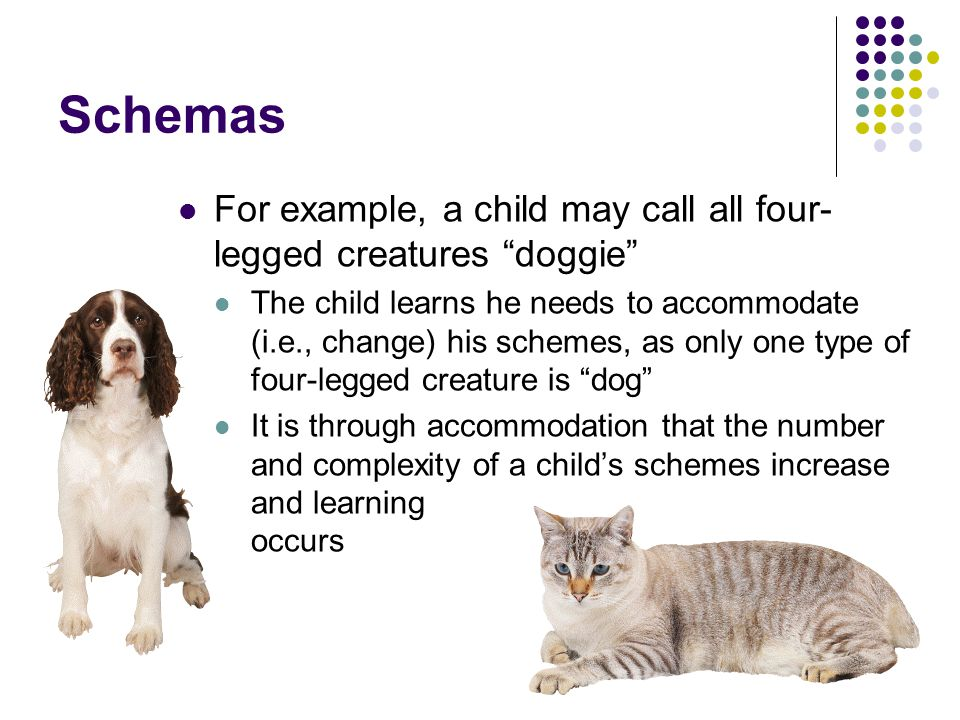 Schemas For example, a child may call all four-legged creatures doggie