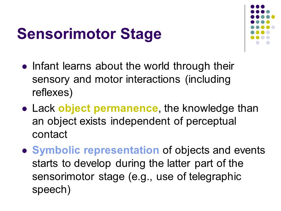 Sensorimotor Stage Infant learns about the world through their sensory and motor interactions (including reflexes)
