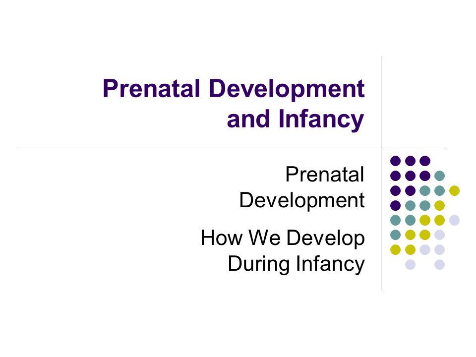 Prenatal Development and Infancy
