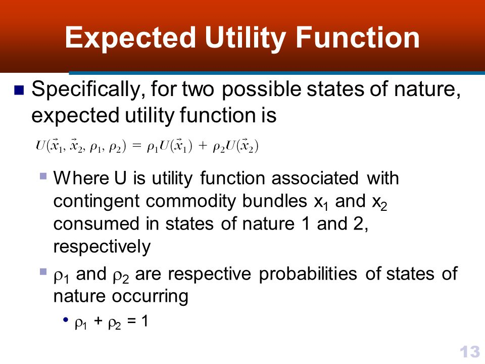 Expected Utility Function