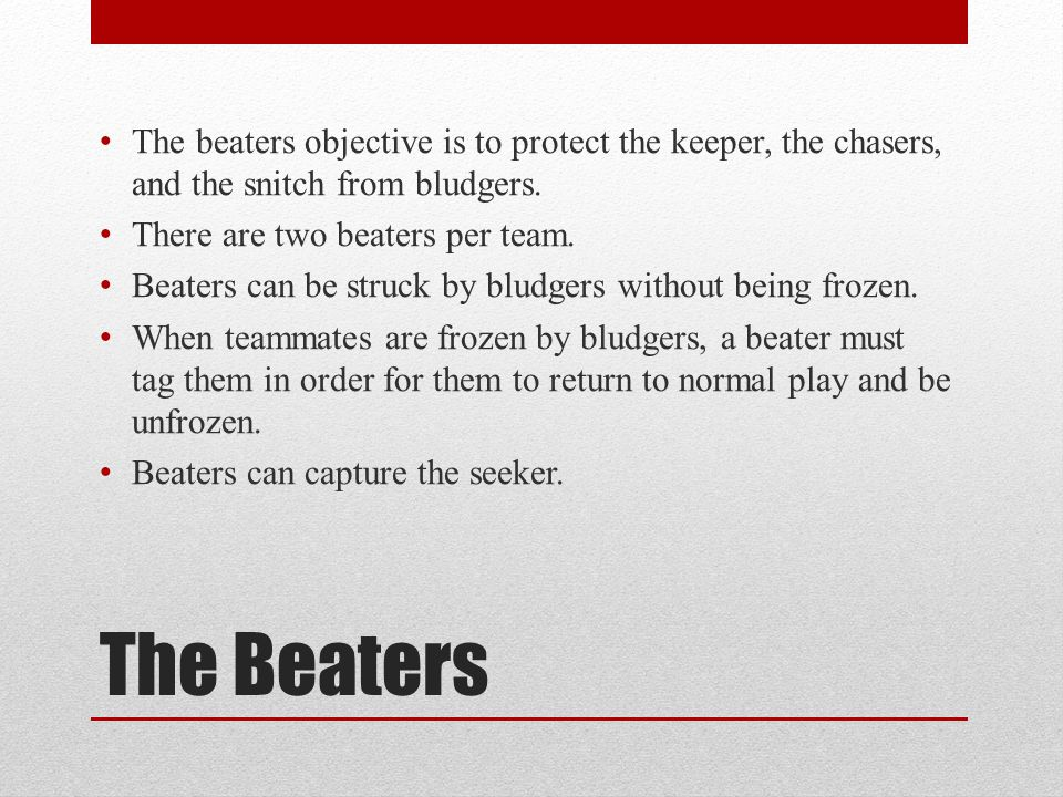 The beaters objective is to protect the keeper, the chasers, and the snitch from bludgers.