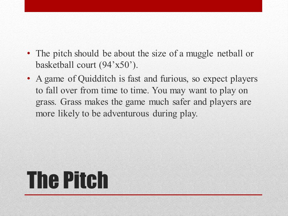 The pitch should be about the size of a muggle netball or basketball court (94'x50').