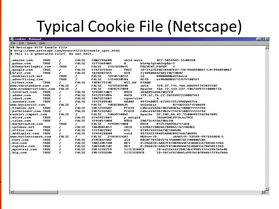Typical Cookie File (Netscape)