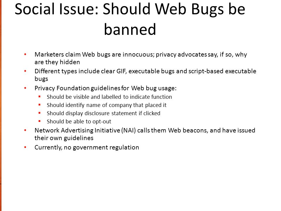 Social Issue: Should Web Bugs be banned