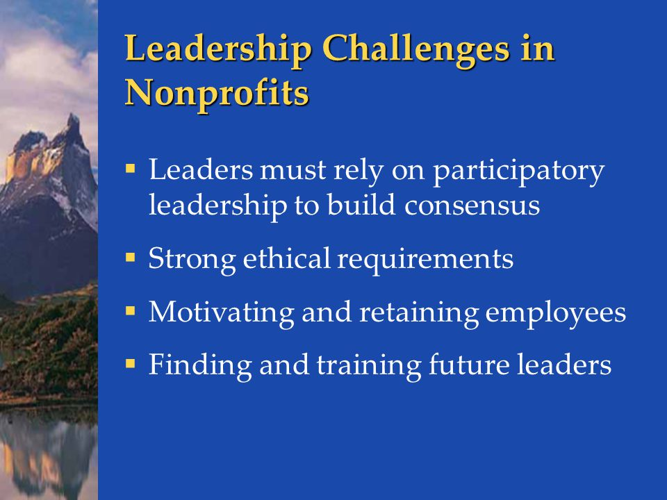 Leadership Challenges in Nonprofits