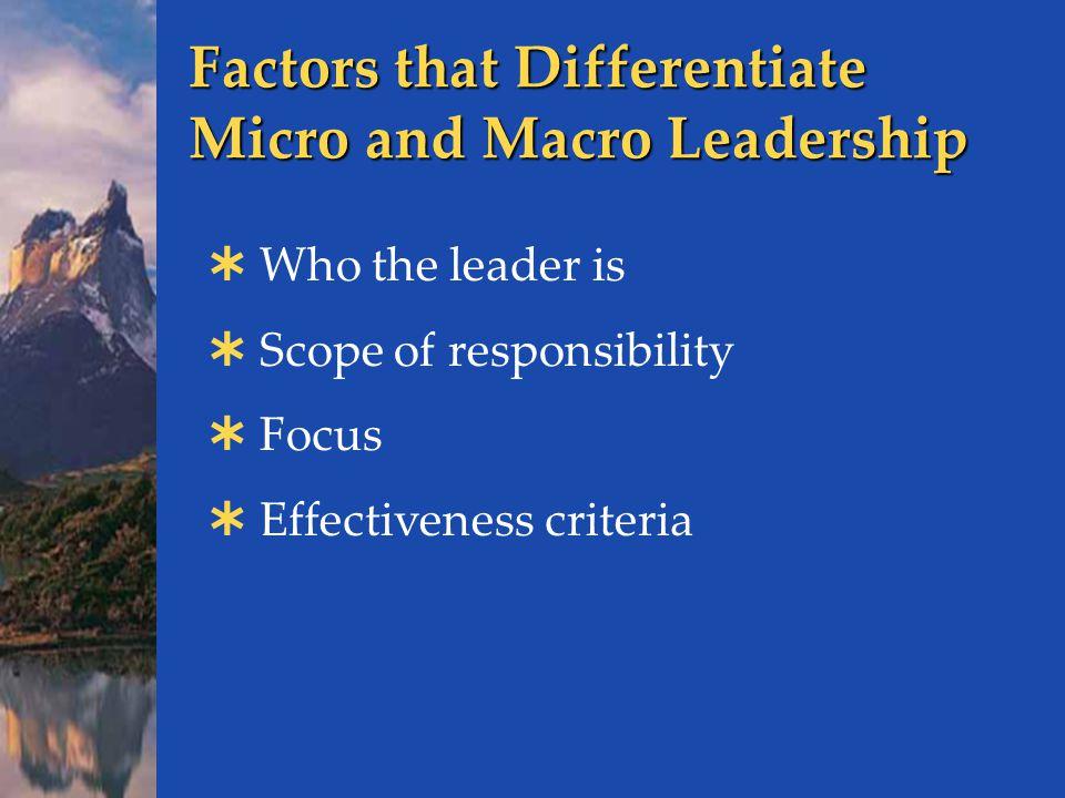 Factors that Differentiate Micro and Macro Leadership