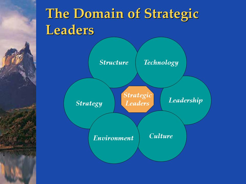 The Domain of Strategic Leaders