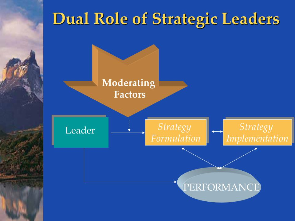Dual Role of Strategic Leaders