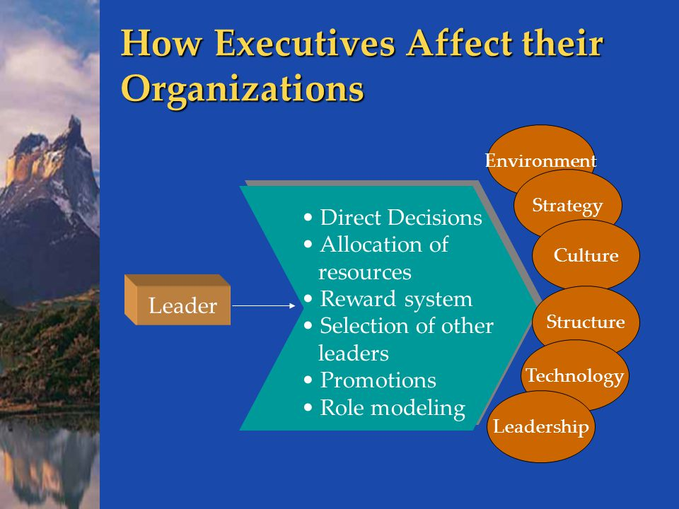 How Executives Affect their Organizations