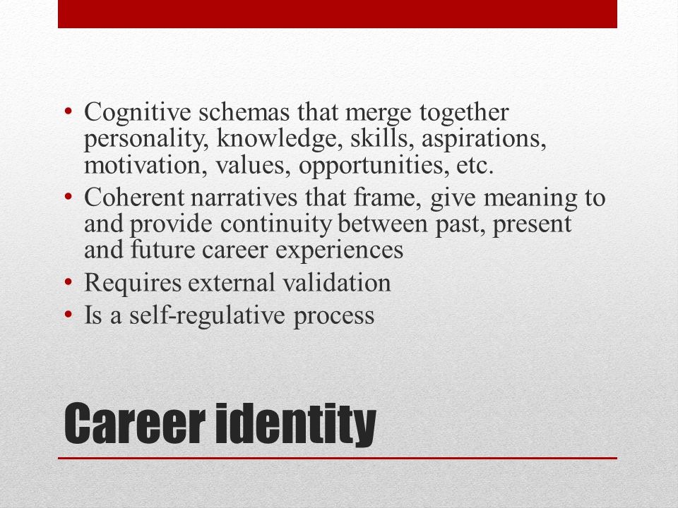 Cognitive schemas that merge together personality, knowledge, skills, aspirations, motivation, values, opportunities, etc.