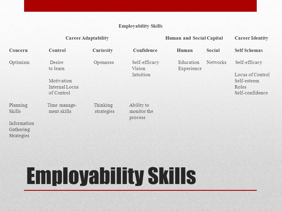 Employability Skills Career Adaptability Human and Social Capital Career Identity Concern Control Curiosity Confidence Human Social Self Schemas Optimism Desire Openness Self-efficacy Education Networks Self-efficacy to learn Vision Experience Intuition Locus of Control Motivation Self-esteem Internal Locus Roles of Control Self-confidence Planning Time manage- Thinking Ability to Skills ment skills strategies monitor the process Information Gathering Strategies