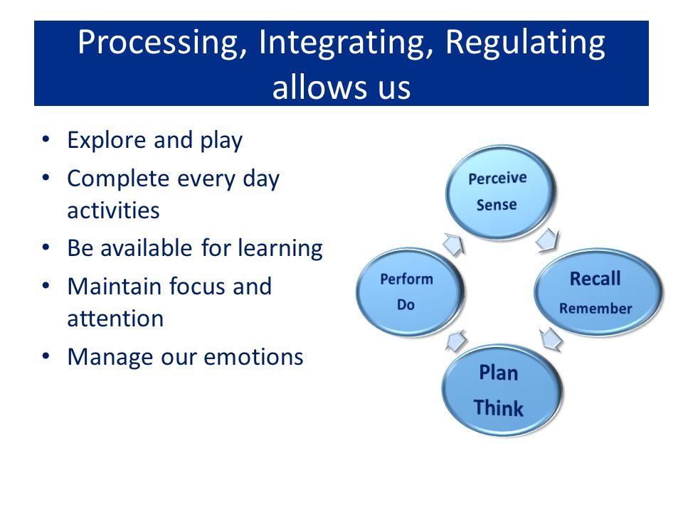 Processing, Integrating, Regulating allows us