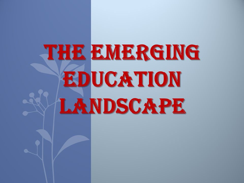 The emerging education landscape