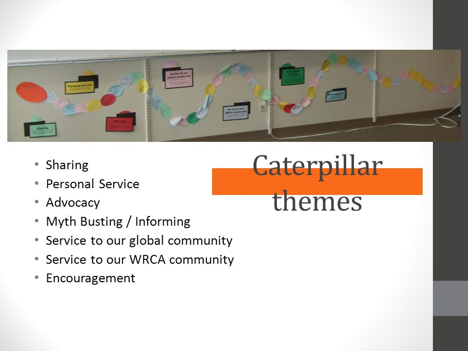 Caterpillar themes Sharing Personal Service Advocacy